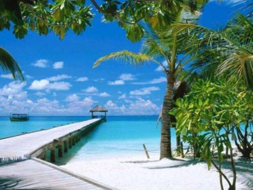 三亚:加快邮轮旅游中心建设,促进游艇旅游发展
