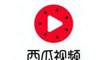 """西瓜视频推出""""在家也能做大厨""""专题,联合13家食品品牌创作美食视频"""