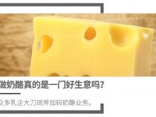 做奶酪真的是一门好生意吗?